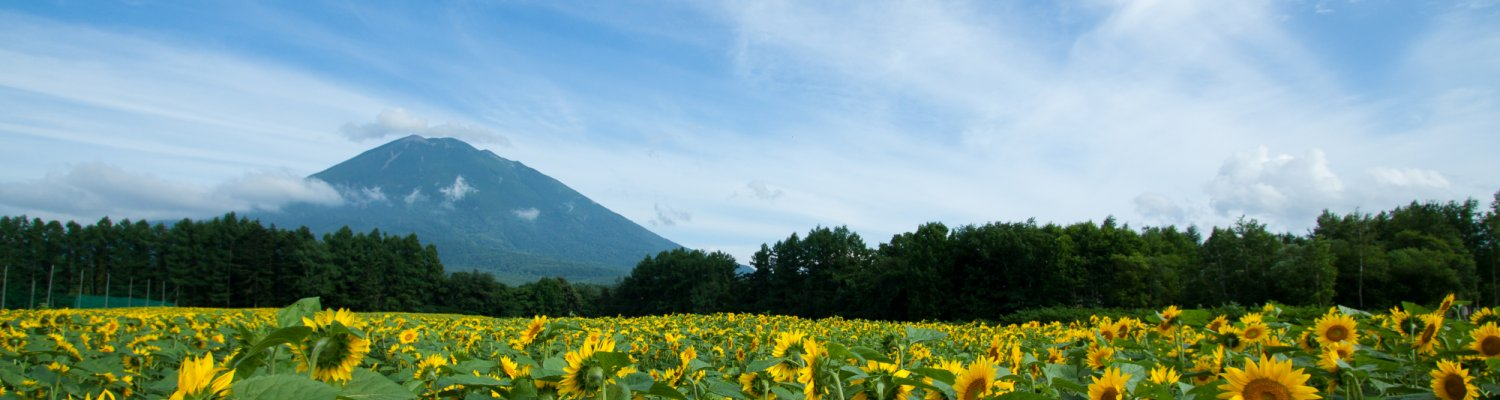 20100803 Niseko Photography Img 5431